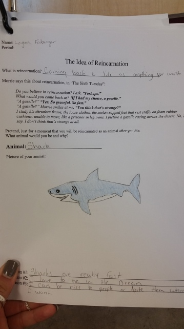 A great example--effort put in to drawing!