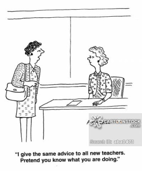 'I give the same advice to all new teachers. Pretend you know what you are doing.'